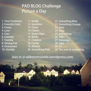 PAD Blog Challenge